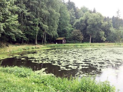 Teich Hoehenberg